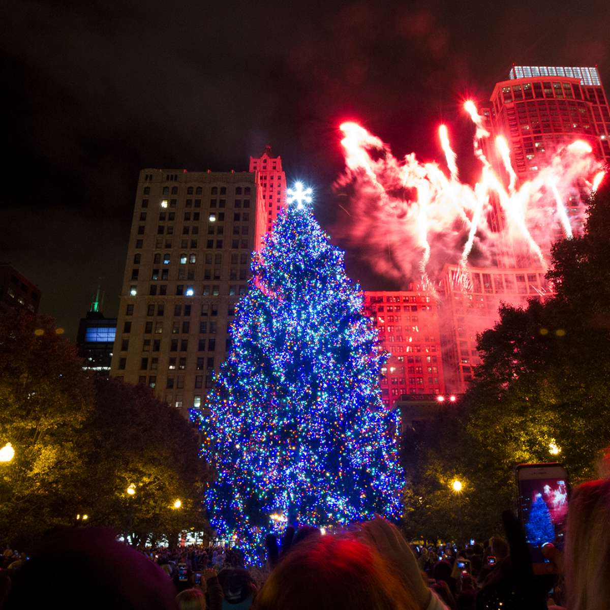 Chicago Christmas.Brightview Finds Transports And Installs Chicago Christmas