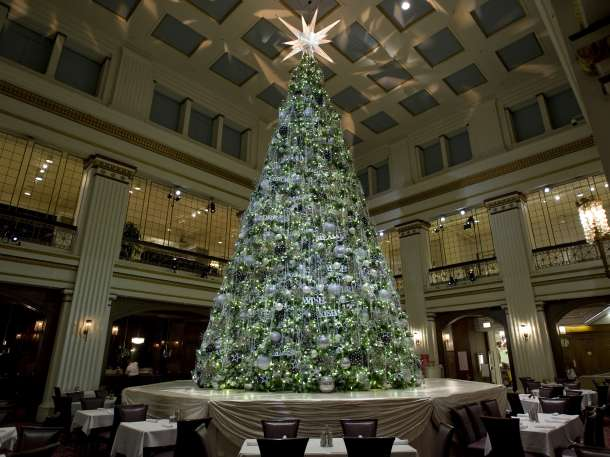 Macys Christmas Tree.Five Must See Christmas Trees In The Chicago Loop